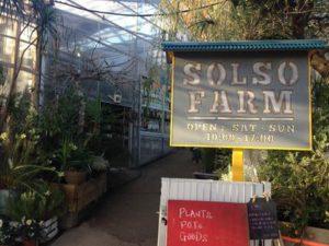 圧倒的にかっこいい農園?